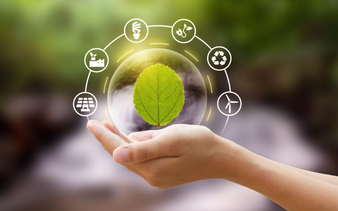 La importància de la transició energètica a les empreses